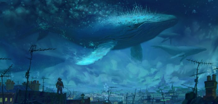 鲸鱼与微笑