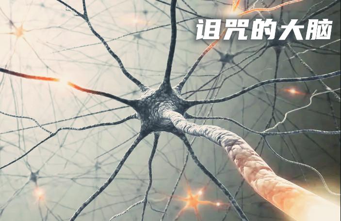 诅咒的大脑